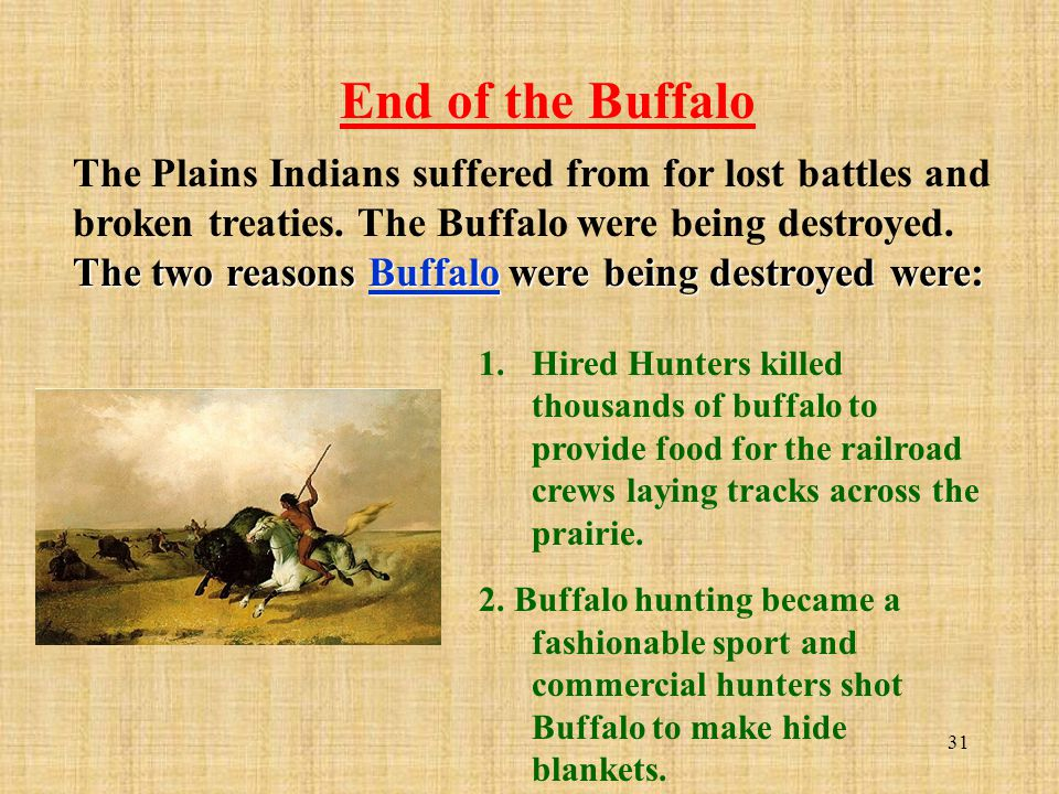 31 The two reasons Buffalo were being destroyed were: The Plains Indians suffered from for lost battles and broken treaties. The Buffalo were being de