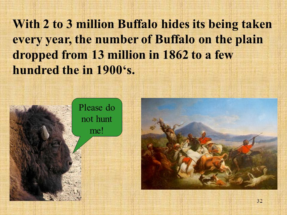 32 With 2 to 3 million Buffalo hides its being taken every year, the number of Buffalo on the plain dropped from 13 million in 1862 to a few hundred t