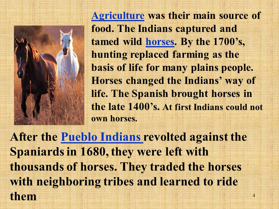 4 After the Pueblo Indians revolted against the Spaniards in 1680, they were left with thousands of horses. They traded the horses with neighboring tr