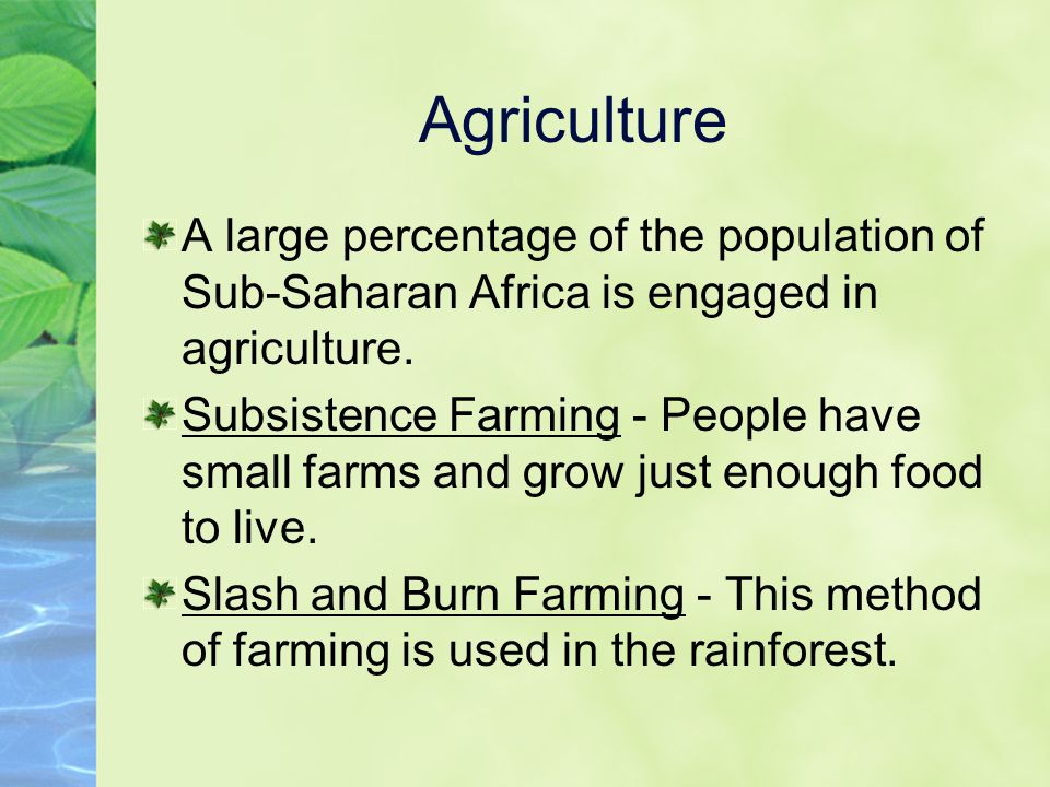 Agriculture A large percentage of the population of Sub-Saharan Africa is engaged in agriculture. Subsistence Farming - People have small farms and gr
