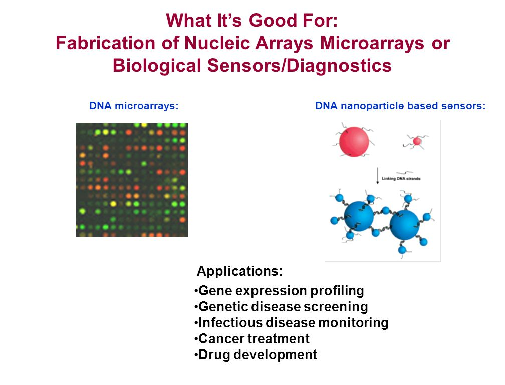 What Its Good For: Fabrication of Nucleic Arrays Microarrays or Biological Sensors/Diagnostics Applications: Gene expression profiling Genetic disease screening Infectious disease monitoring Cancer treatment Drug development DNA nanoparticle based sensors: 100 nm DNA microarrays: