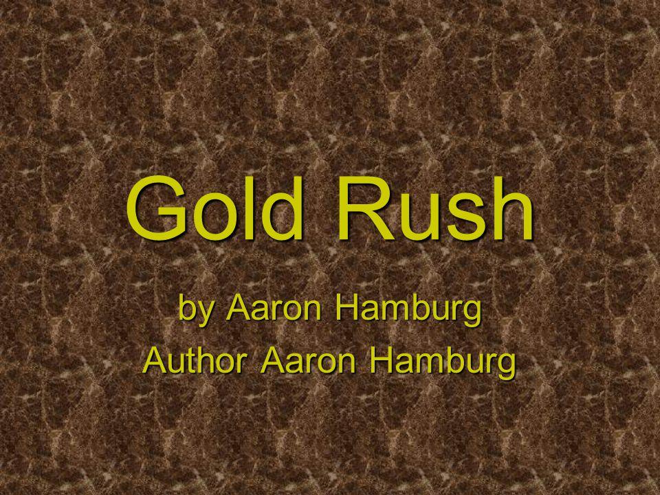 Gold Rush by Aaron Hamburg Author Aaron Hamburg