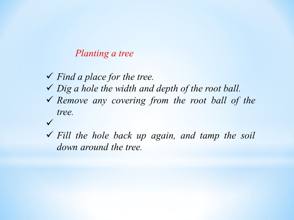 Planting a tree Find a place for the tree.Dig a hole the width and depth of the root ball.