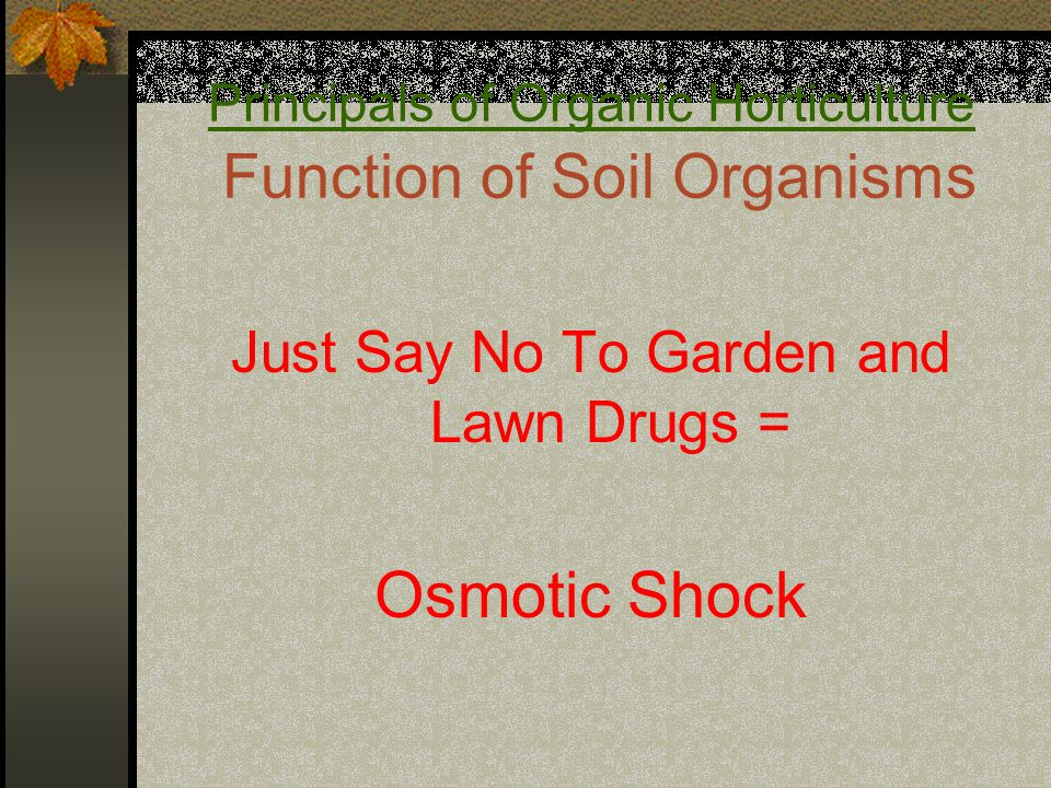 Principals of Organic Horticulture Function of Soil Organisms Just Say No To Garden and Lawn Drugs = Osmotic Shock