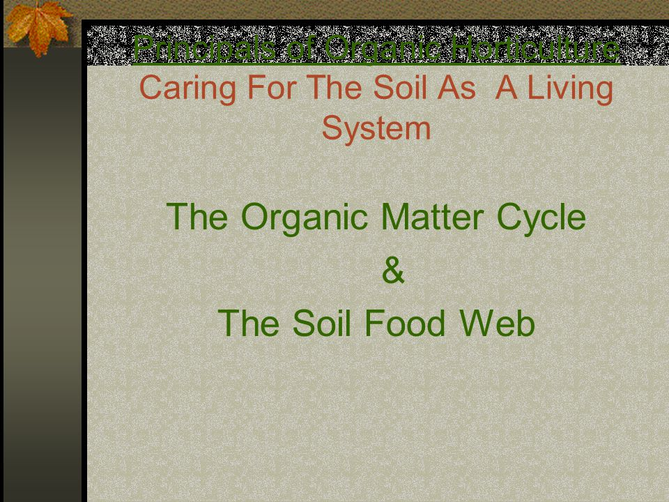Principals of Organic Horticulture Caring For The Soil As A Living System The Organic Matter Cycle & The Soil Food Web