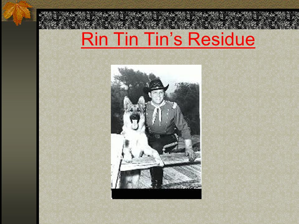 Rin Tin Tins Residue