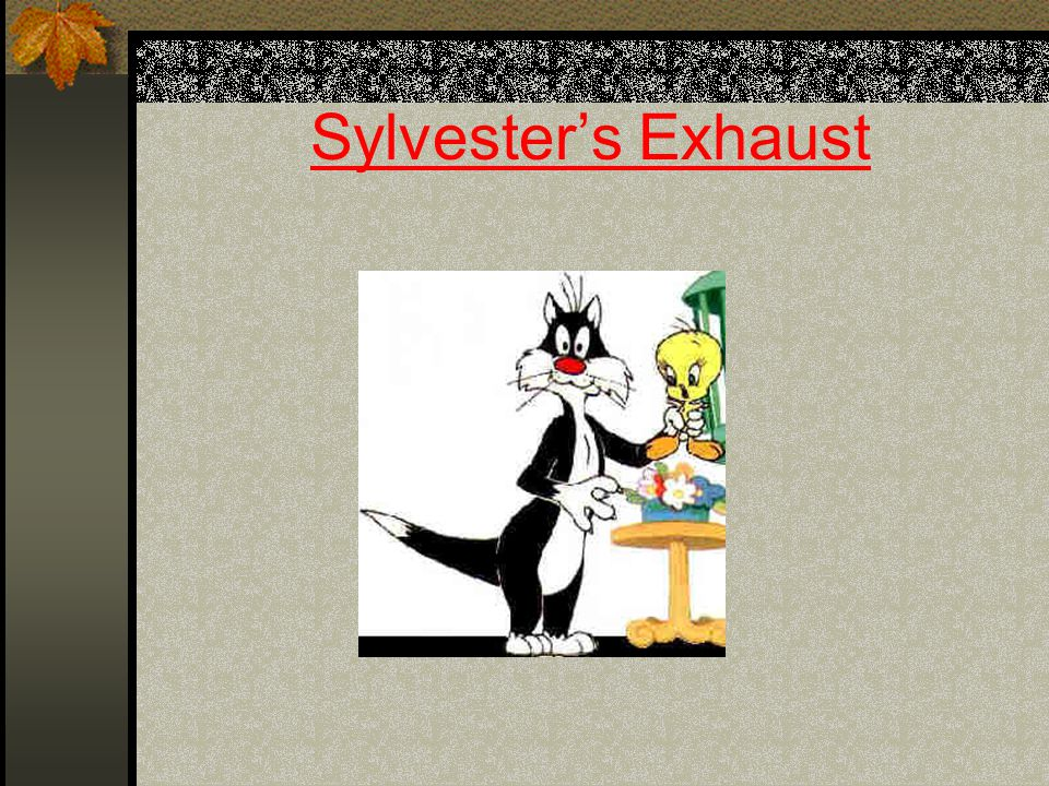 Sylvesters Exhaust