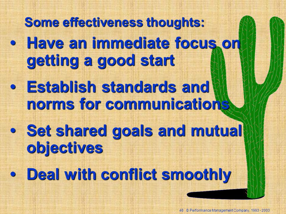 46 © Performance Management Company, Some effectiveness thoughts: Have an immediate focus on getting a good startHave an immediate focus on getting a good start Establish standards and norms for communicationsEstablish standards and norms for communications Set shared goals and mutual objectivesSet shared goals and mutual objectives Deal with conflict smoothlyDeal with conflict smoothly