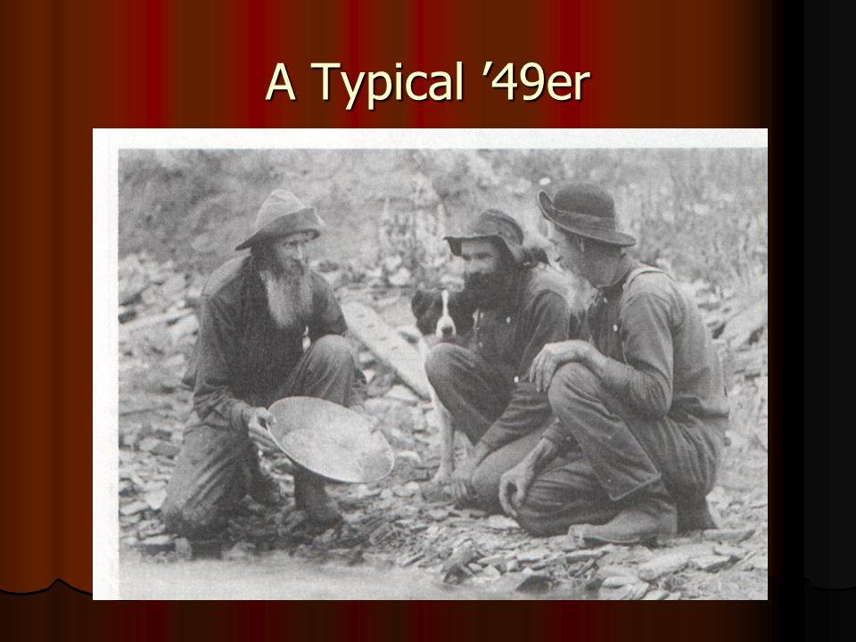 A Typical 49er
