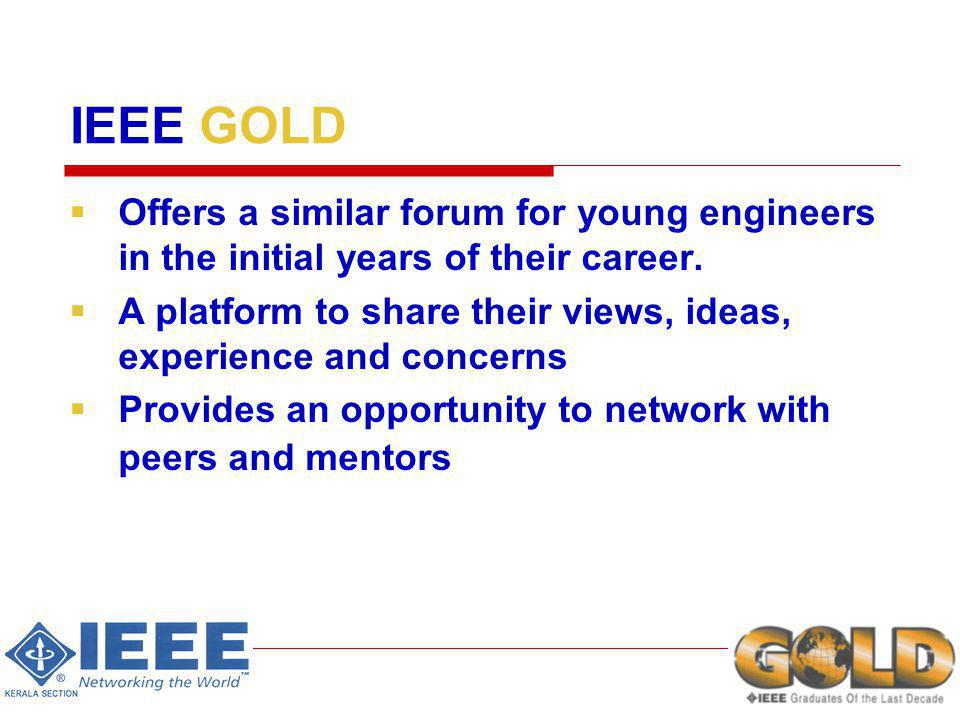 IEEE GOLD Offers a similar forum for young engineers in the initial years of their career.