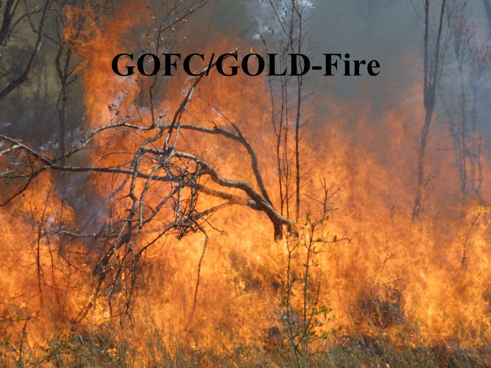 GOFC/GOLD-Fire