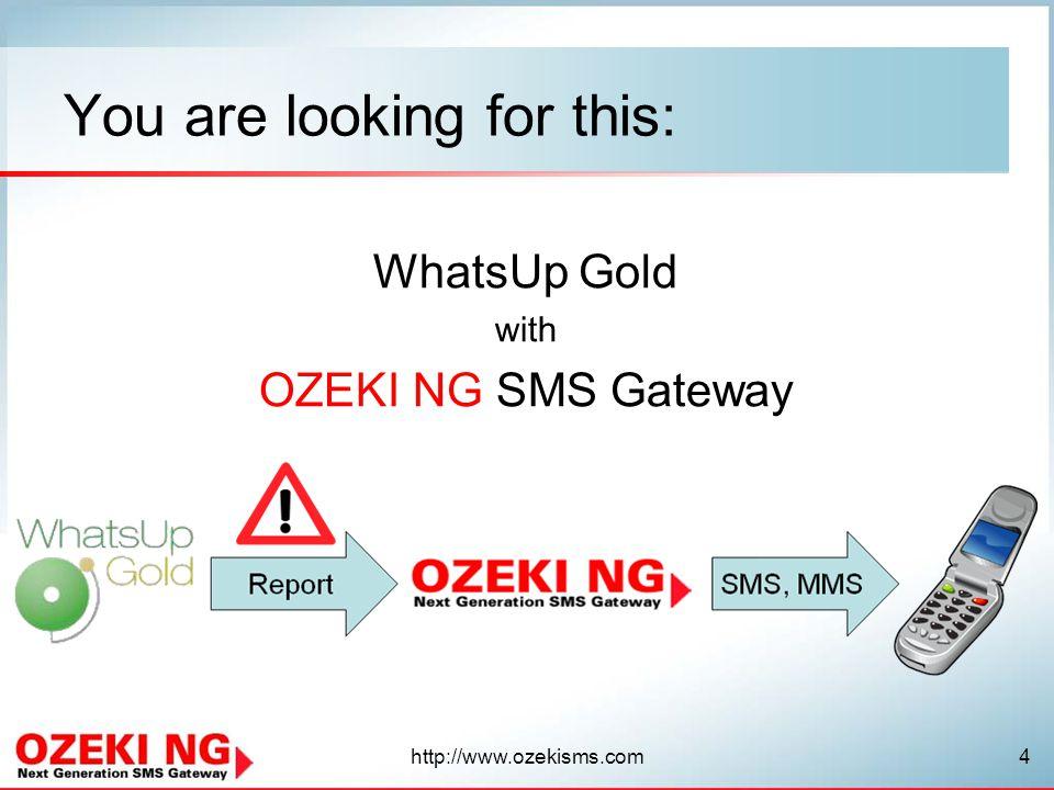 http://www.ozekisms.com5 No more delays.