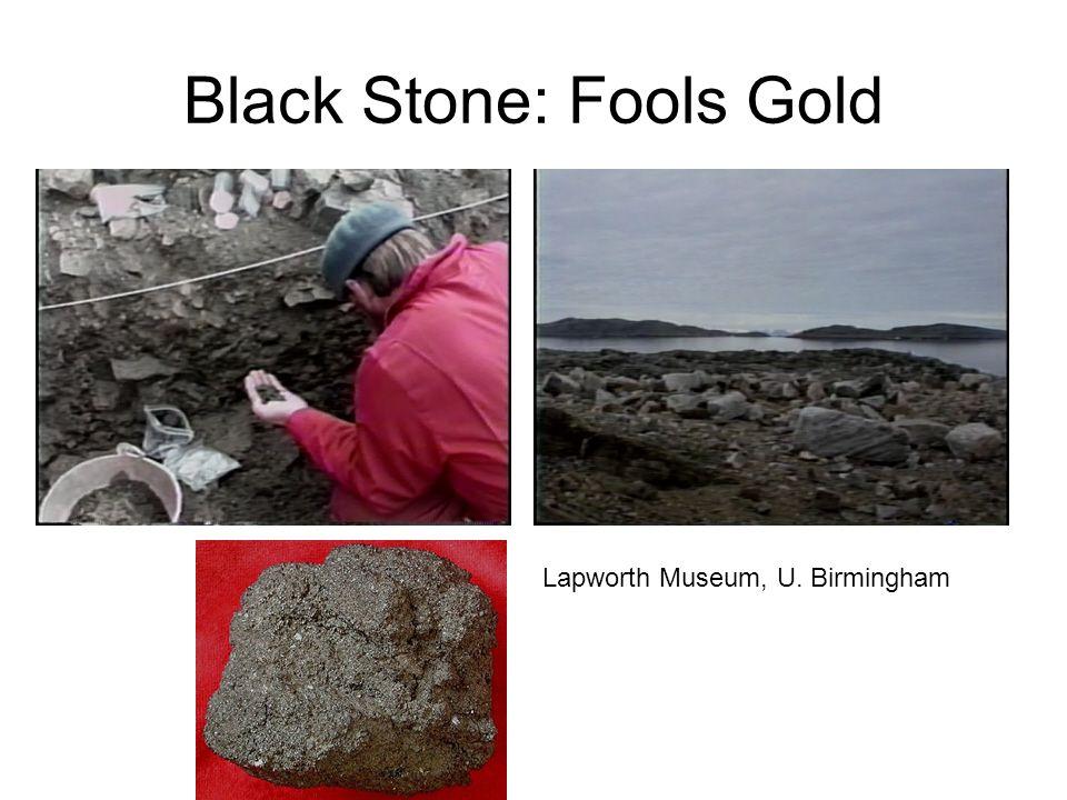 Black Stone: Fools Gold Lapworth Museum, U. Birmingham