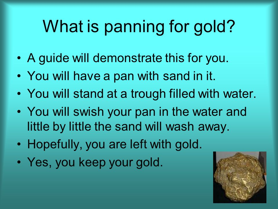 What is panning for gold.A guide will demonstrate this for you.