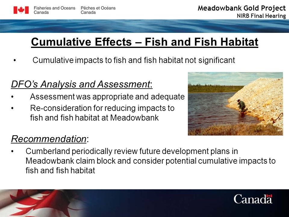 Cumulative Effects – Fish and Fish Habitat Meadowbank Gold Project NIRB Final Hearing Cumulative impacts to fish and fish habitat not significant DFOs Analysis and Assessment: Assessment was appropriate and adequate Re-consideration for reducing impacts to fish and fish habitat at Meadowbank Recommendation: Cumberland periodically review future development plans in Meadowbank claim block and consider potential cumulative impacts to fish and fish habitat