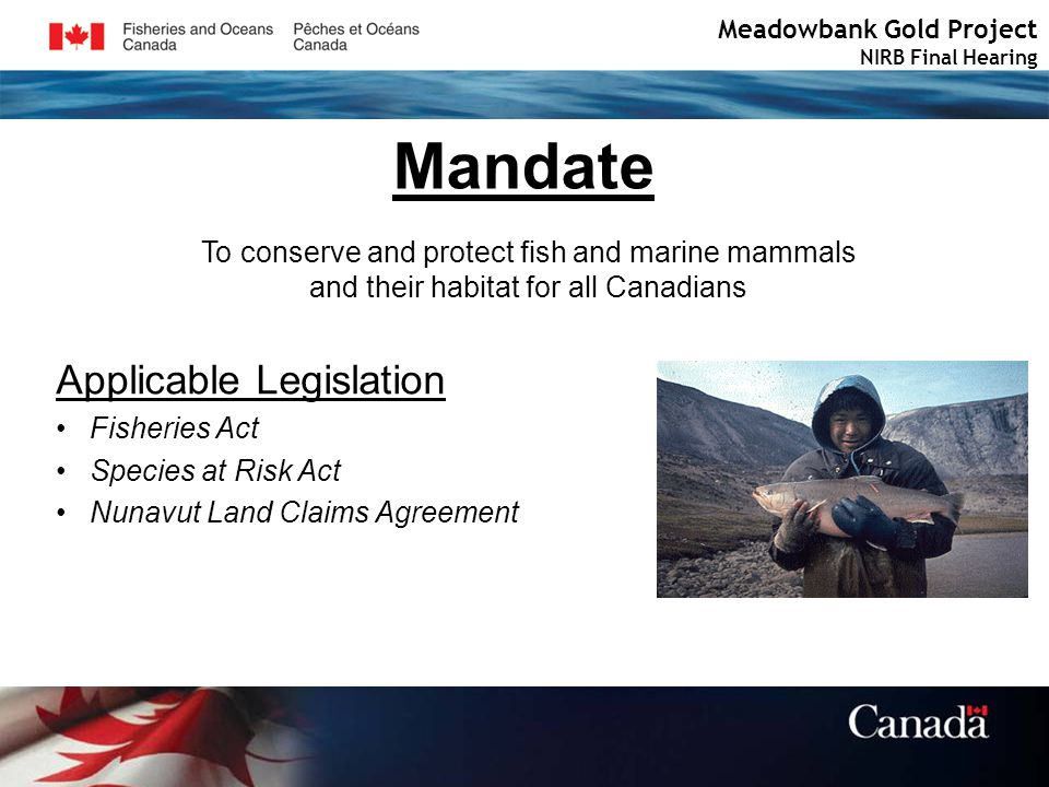 Meadowbank Gold Project NIRB Final Hearing Mandate To conserve and protect fish and marine mammals and their habitat for all Canadians Applicable Legislation Fisheries Act Species at Risk Act Nunavut Land Claims Agreement