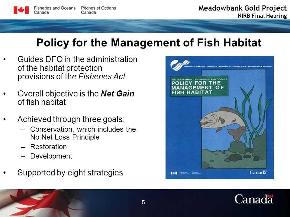 5 Policy for the Management of Fish Habitat Guides DFO in the administration of the habitat protection provisions of the Fisheries Act Overall objective is the Net Gain of fish habitat Achieved through three goals: –Conservation, which includes the No Net Loss Principle –Restoration –Development Supported by eight strategies Meadowbank Gold Project NIRB Final Hearing