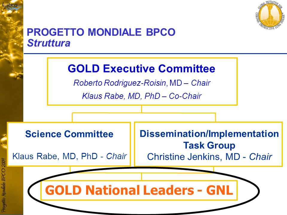 GOLD Executive Committee Roberto Rodriguez-Roisin, MD – Chair Klaus Rabe, MD, PhD – Co-Chair PROGETTO MONDIALE BPCO Struttura Science Committee Klaus Rabe, MD, PhD - Chair Dissemination/Implementation Task Group Christine Jenkins, MD - Chair GOLD National Leaders - GNL