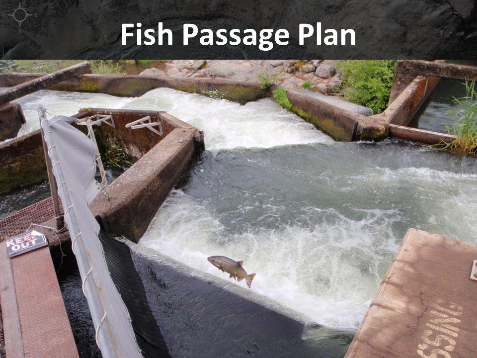 Fish Passage Plan