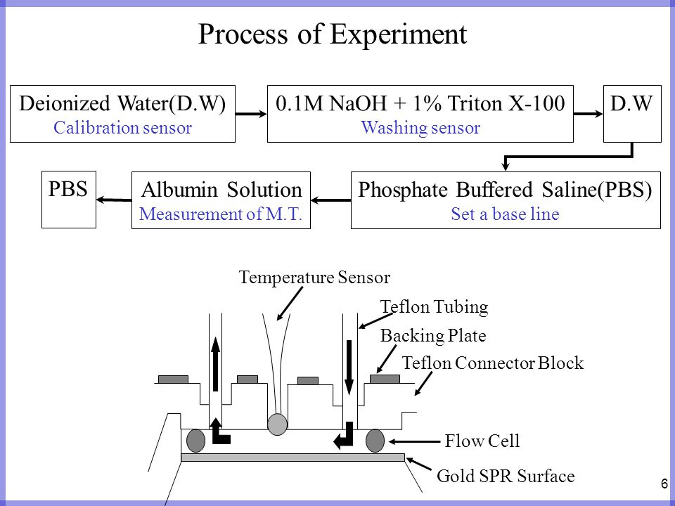 7 Experiment Result Relation between concentration and initial binding rate Fixed flow rate(15 /min)and variable concentration(5, 25, 50, 100 / ) The initial binding rate was clearly influenced by changes in the concentration.