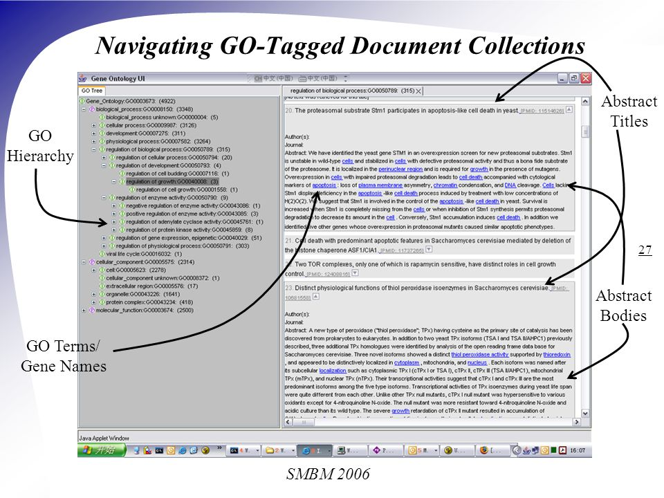 SMBM 2006 27 Navigating GO-Tagged Document Collections GO Hierarchy Abstract Titles Abstract Bodies GO Terms/ Gene Names