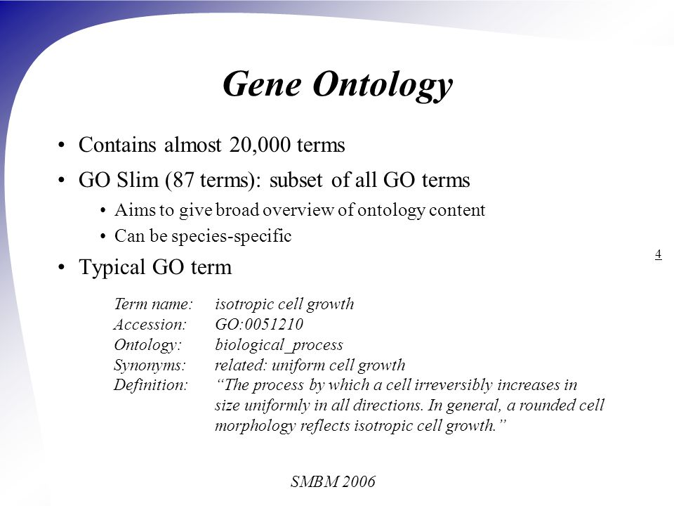 SMBM 2006 15 Lexical Look-Up Web service calls to Termino term tagger Term classes in Termino GO terms GO term synonyms SGD yeast gene names Lexical look-up method Case-insensitive Simple morphological analysis Cells mapped onto cell Mitochondrial, mitochondria not mapped onto mitochondrion