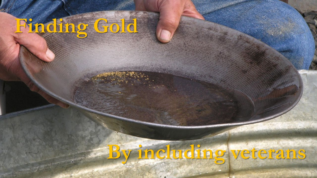 Finding Gold By including veterans