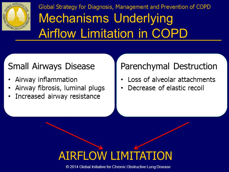 Global Strategy for Diagnosis, Management and Prevention of COPD Mechanisms Underlying Airflow Limitation in COPD Small Airways Disease Airway inflamm