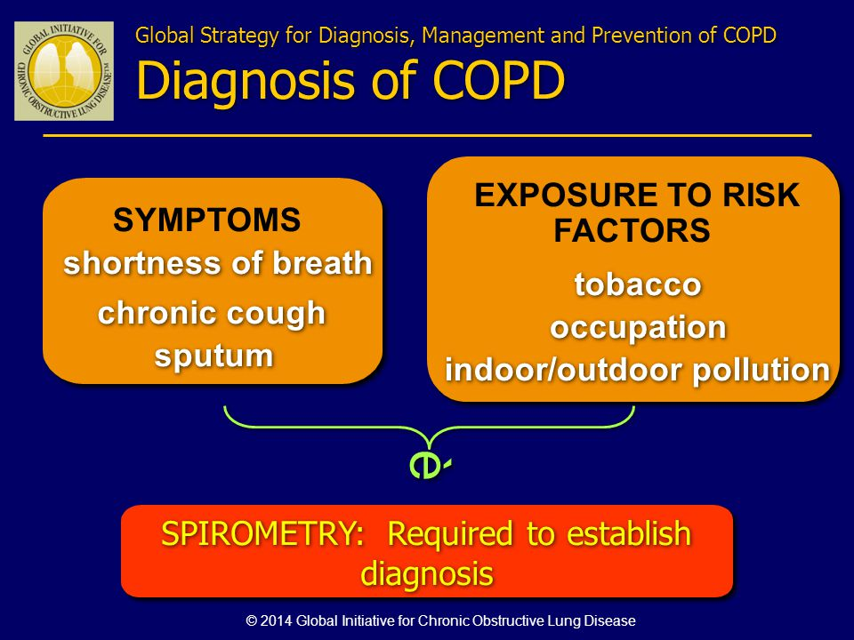 SYMPTOMS chronic cough shortness of breath EXPOSURE TO RISK FACTORS tobacco occupation indoor/outdoor pollution SPIROMETRY: Required to establish diag