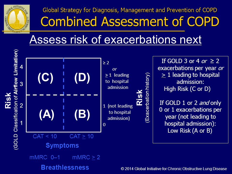 Global Strategy for Diagnosis, Management and Prevention of COPD Combined Assessment of COPD Risk (GOLD Classification of Airflow Limitation) Risk (Ex