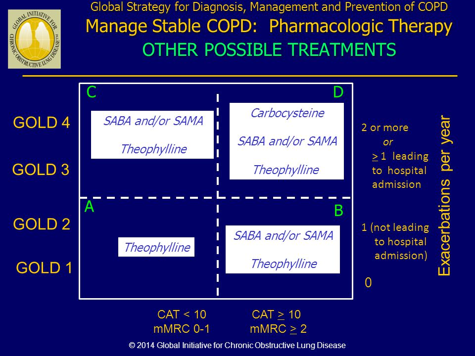 Exacerbations per year 0 CAT < 10 mMRC 0-1 GOLD 4 CAT > 10 mMRC > 2 GOLD 3 GOLD 2 GOLD 1 Global Strategy for Diagnosis, Management and Prevention of C
