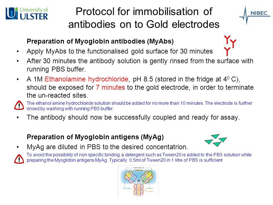 Protocol for immobilisation of antibodies on to Gold electrodes: Summary Step I: SAM formation Step II: SAM activation Step III: Antibodies applying Step IV: Antigen Binding