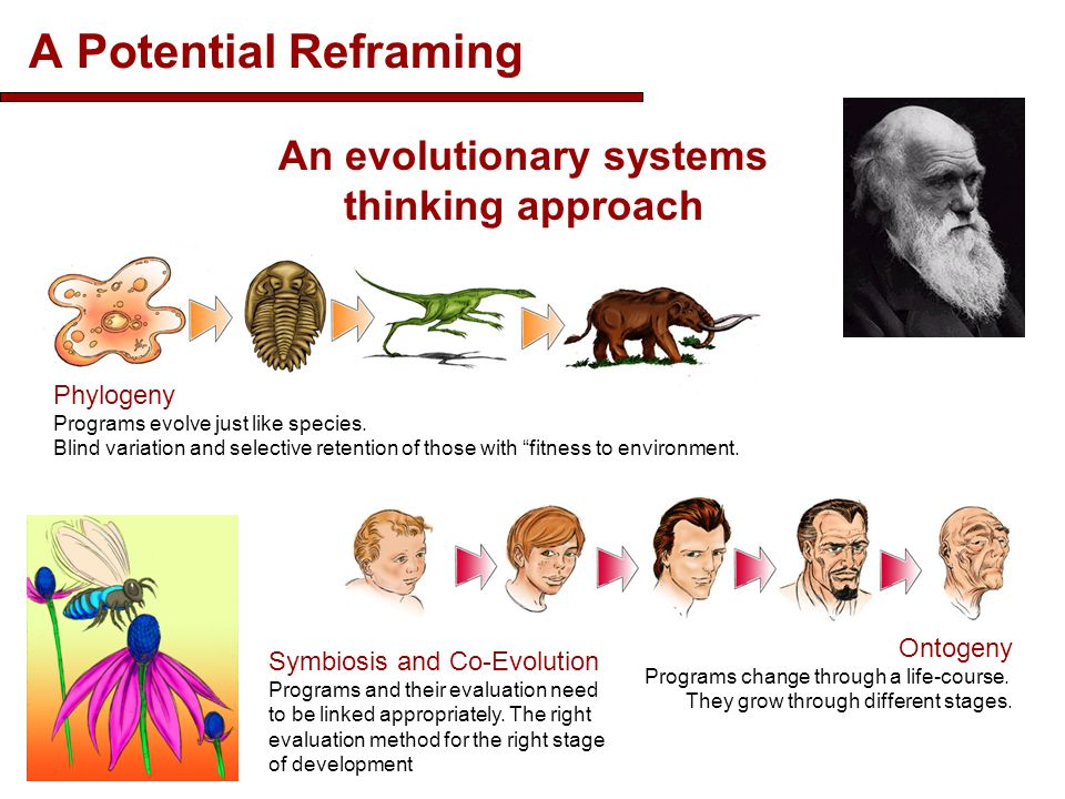 A Potential Reframing 25 An evolutionary systems thinking approach Phylogeny Programs evolve just like species. Blind variation and selective retentio
