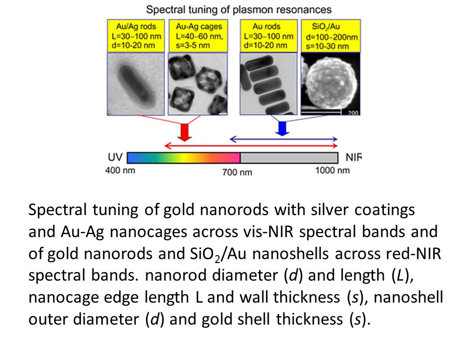 Spectral tuning of gold nanorods with silver coatings and Au-Ag nanocages across vis-NIR spectral bands and of gold nanorods and SiO 2 /Au nanoshells