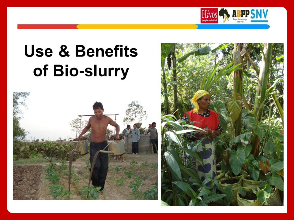 Use & Benefits of Bio-slurry