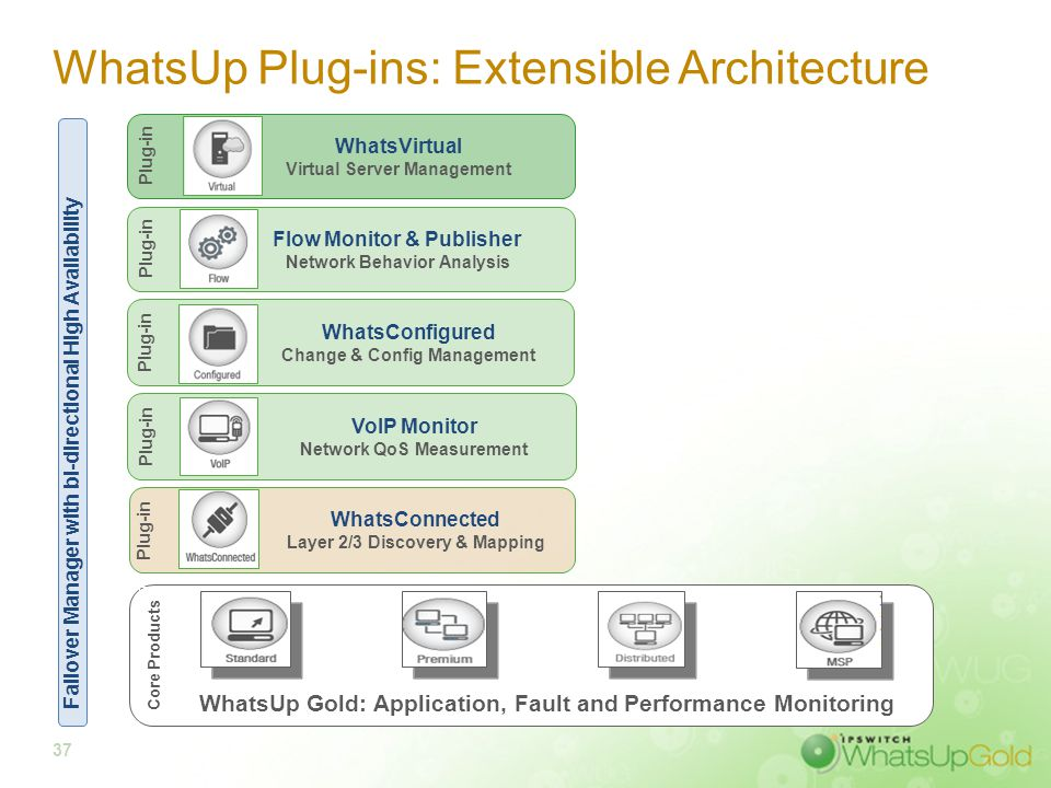 37 WhatsUp Plug-ins: Extensible Architecture WhatsUp Gold: Application, Fault and Performance Monitoring Core Products VoIP Monitor Network QoS Measur