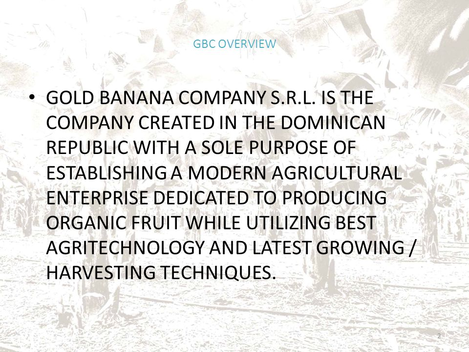 GBC OVERVIEW GOLD BANANA COMPANY S.R.L.