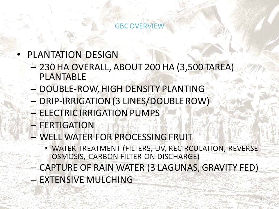 PLANTATION DESIGN – 230 HA OVERALL, ABOUT 200 HA (3,500 TAREA) PLANTABLE – DOUBLE-ROW, HIGH DENSITY PLANTING – DRIP-IRRIGATION (3 LINES/DOUBLE ROW) – ELECTRIC IRRIGATION PUMPS – FERTIGATION – WELL WATER FOR PROCESSING FRUIT WATER TREATMENT (FILTERS, UV, RECIRCULATION, REVERSE OSMOSIS, CARBON FILTER ON DISCHARGE) – CAPTURE OF RAIN WATER (3 LAGUNAS, GRAVITY FED) – EXTENSIVE MULCHING GBC OVERVIEW 4