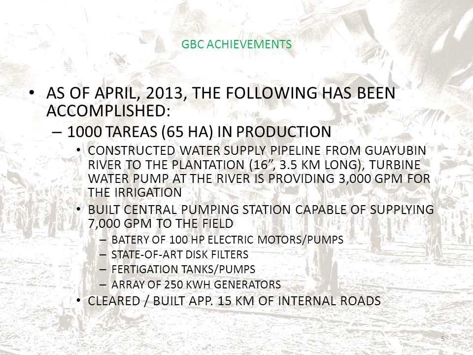 GBC ACHIEVEMENTS AS OF APRIL, 2013, THE FOLLOWING HAS BEEN ACCOMPLISHED: – 1000 TAREAS (65 HA) IN PRODUCTION CONSTRUCTED WATER SUPPLY PIPELINE FROM GUAYUBIN RIVER TO THE PLANTATION (16, 3.5 KM LONG), TURBINE WATER PUMP AT THE RIVER IS PROVIDING 3,000 GPM FOR THE IRRIGATION BUILT CENTRAL PUMPING STATION CAPABLE OF SUPPLYING 7,000 GPM TO THE FIELD – BATERY OF 100 HP ELECTRIC MOTORS/PUMPS – STATE-OF-ART DISK FILTERS – FERTIGATION TANKS/PUMPS – ARRAY OF 250 KWH GENERATORS CLEARED / BUILT APP.