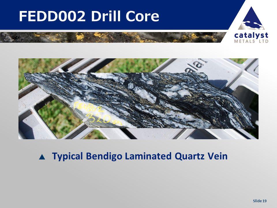 Slide 19 FEDD002 Drill Core Typical Bendigo Laminated Quartz Vein