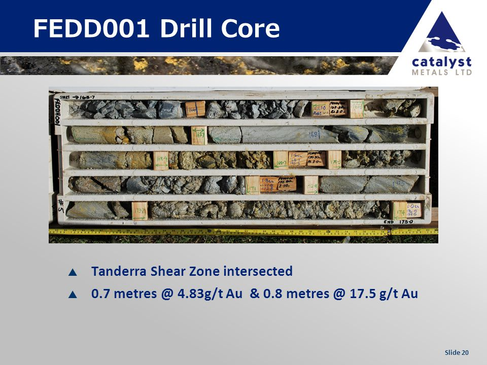 Slide 20 FEDD001 Drill Core Tanderra Shear Zone intersected 0.7 metres @ 4.83g/t Au & 0.8 metres @ 17.5 g/t Au