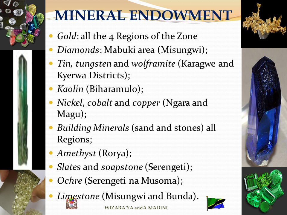 MINERAL ENDOWMENT Gold: all the 4 Regions of the Zone Diamonds: Mabuki area (Misungwi); Tin, tungsten and wolframite (Karagwe and Kyerwa Districts); K