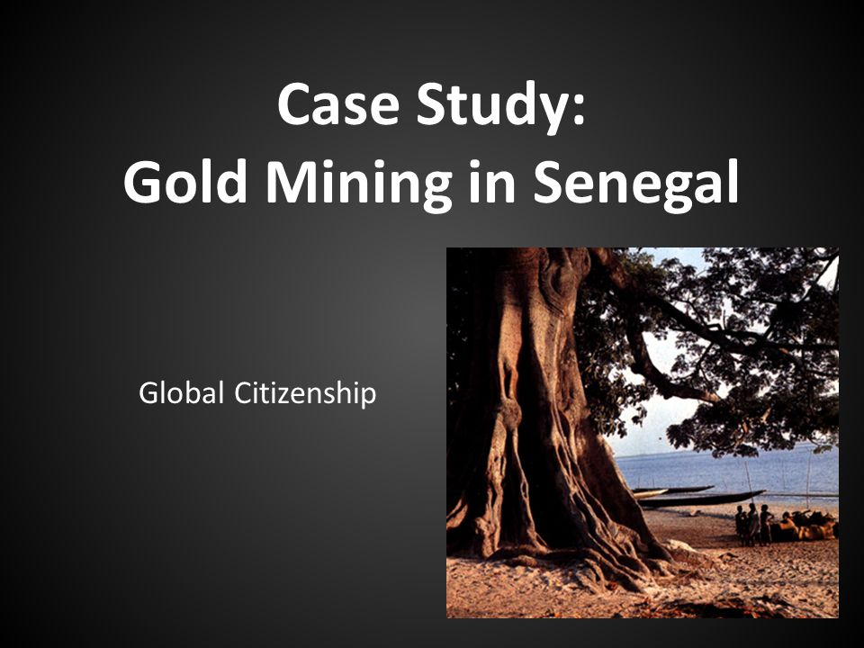 Case Study: Gold Mining in Senegal Global Citizenship