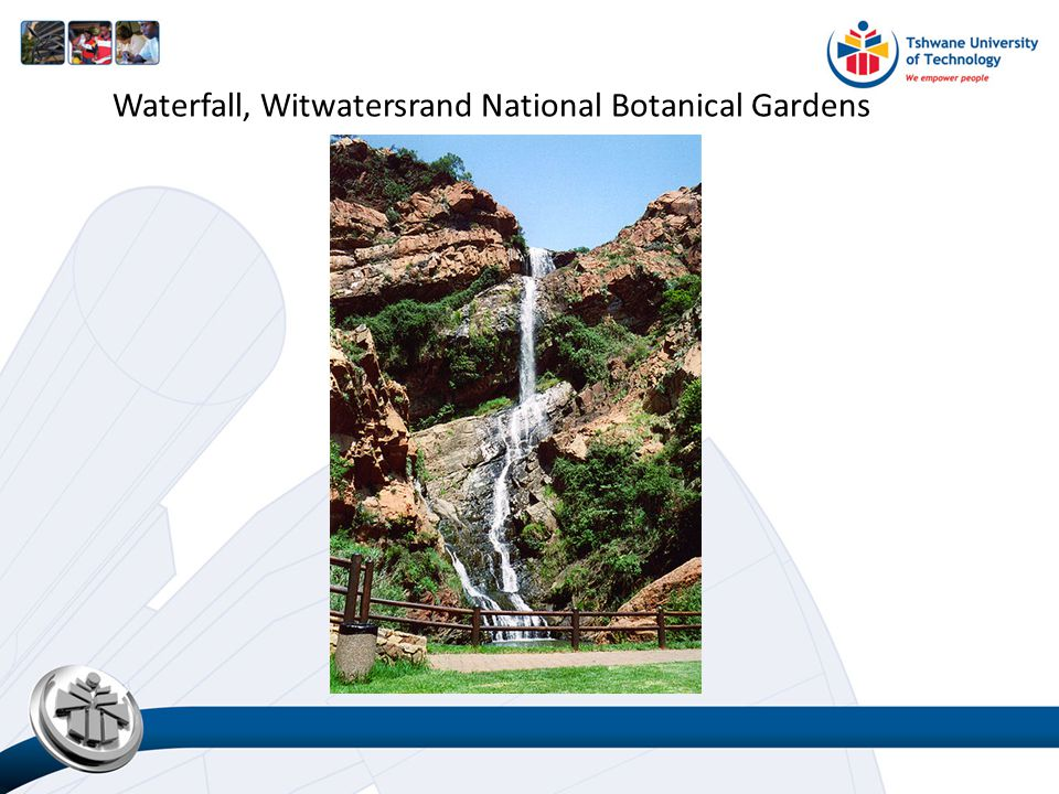 Waterfall, Witwatersrand National Botanical Gardens