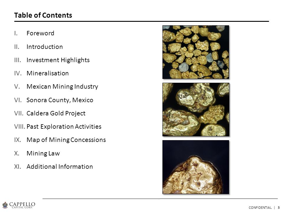 3 CONFIDENTIAL | Table of Contents I.Foreword II.Introduction III.Investment Highlights IV.Mineralisation V.Mexican Mining Industry VI.Sonora County, Mexico VII.Caldera Gold Project VIII.Past Exploration Activities IX.Map of Mining Concessions X.Mining Law XI.Additional Information