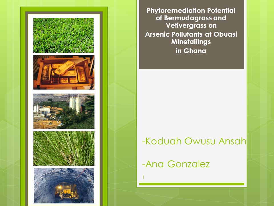 Physiological Characteristics Adaptable to extreme environmental conditions.