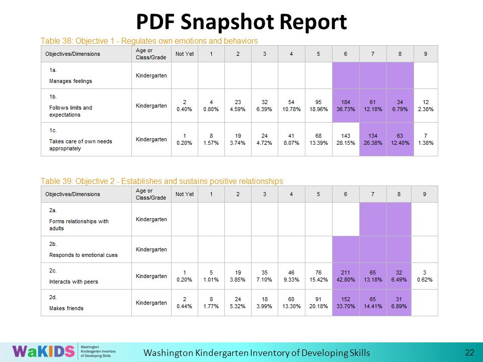 Washington Kindergarten Inventory of Developing Skills PDF Snapshot Report 22