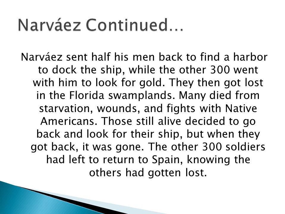 Narváez sent half his men back to find a harbor to dock the ship, while the other 300 went with him to look for gold. They then got lost in the Florid