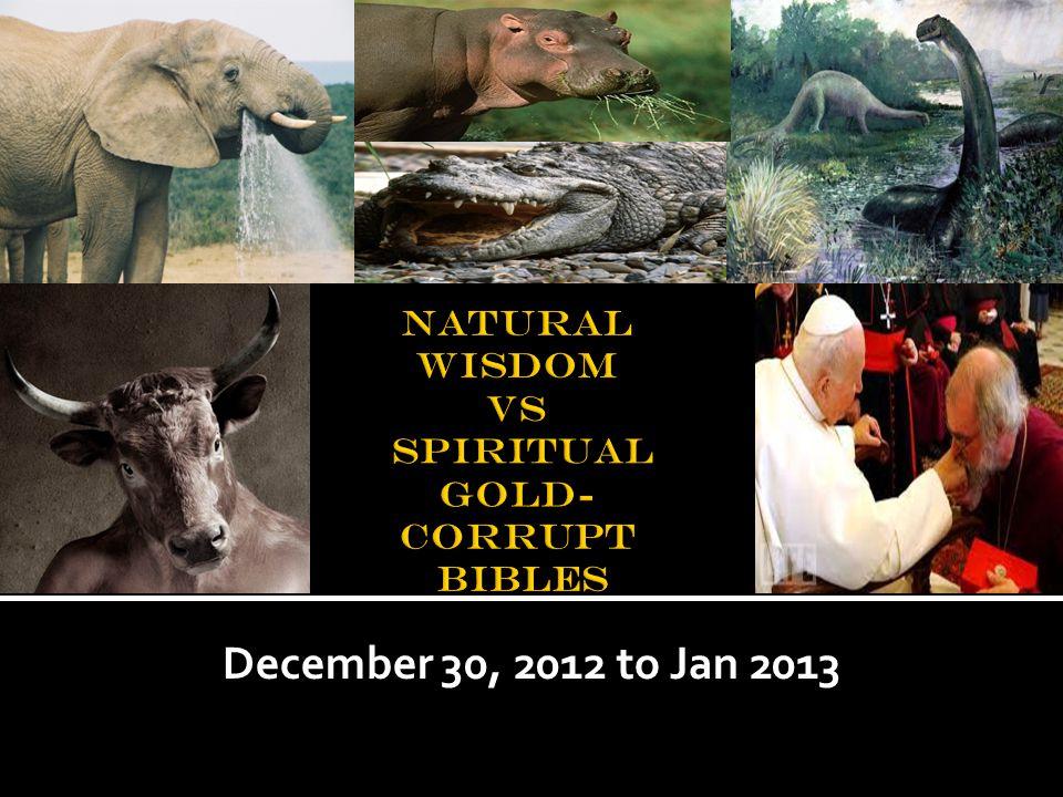 December 30, 2012 to Jan 2013