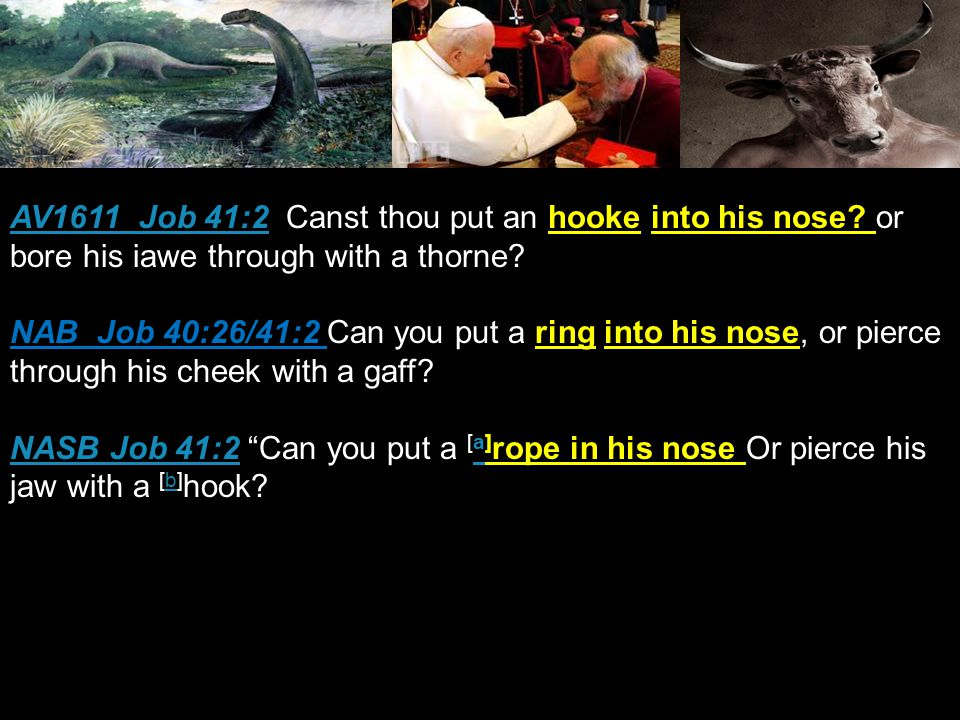 AV1611 Job 41:2AV1611 Job 41:2 Canst thou put an hooke into his nose.
